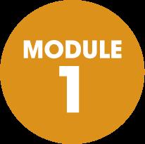 module-1-orange