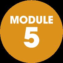 module-5-orange