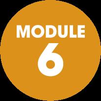 module-6-orange